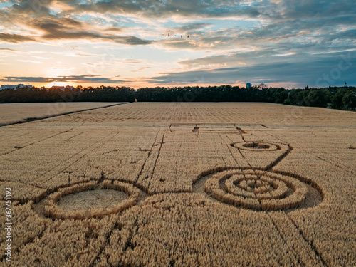 Cuadros en Lienzo Mysterious crop circle in oat field near the city at the evening sunset