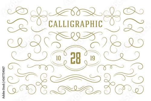 Photo Calligraphic design elements vintage ornaments swirls and scrolls ornate decorat