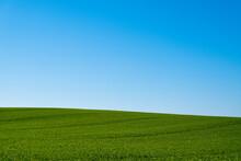 Zielone Pole Na Niebieskim Nie...