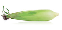 Corn Isolated On A White Backg...