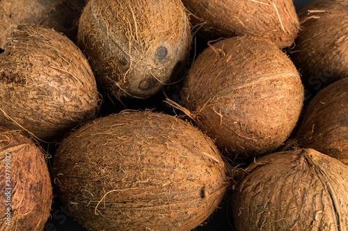 Valokuvatapetti Intact coconuts