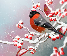 Christmas Winter Background, R...