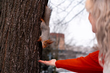 Senior Woman Feeding Squirrel ...