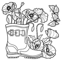 Poppy Flowers In A Boot, Two B...