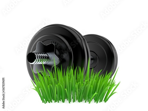 Canvas Print Dumbbell on grass