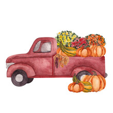 Watercolor Illustration With R...