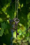 Fototapeta Tęcza - Vintage Skeleton Keys