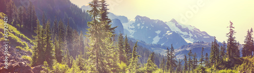 Obraz Mt Baker Area - fototapety do salonu