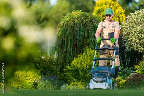 Obraz Beautiful Garden Backyard Grass Mowing - fototapety do salonu