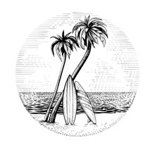 Surfboards Under The Palm Tree...