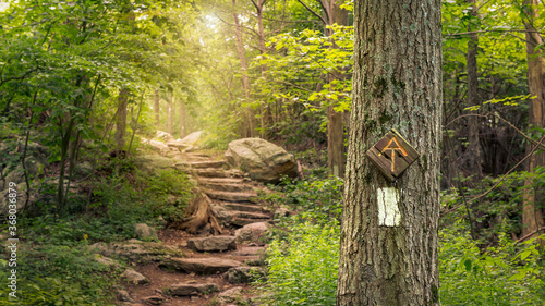 Canvastavla Rock steps along the Appalachian Trail in Stokes State Forest New Jersey