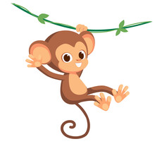 Cute Baby Monkey Hanging On Tr...