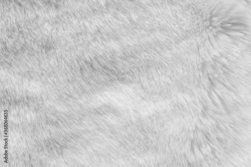 White fur fabric texture background