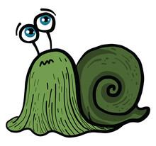 Green Snail, Illustration, Vector On White Background