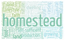 Homestead Word Cloud Isolated On A White Background