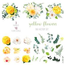 Yellow Hydrangea, Mustard Rose...