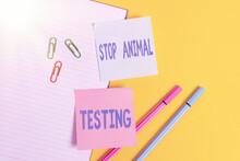 Handwriting Text Stop Animal T...