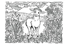 Coloring Book, Little Lamb Grazes In The Meadows Among Mountains, Clouds, Mountains, Sheep, Meadows, Claver, Flowers, Herbs, Black And White Drawing, Sketch, Vector Illustration