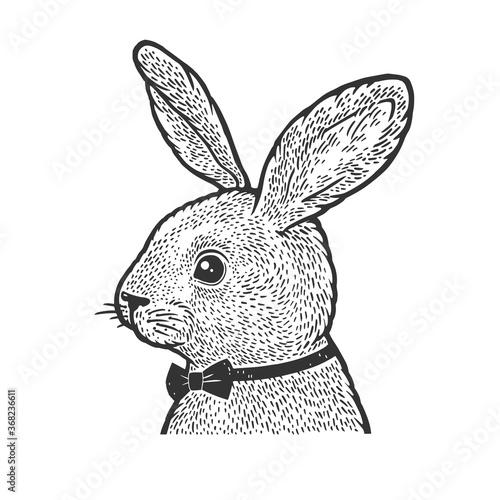 Obraz Rabbit in bow tie sketch engraving vector illustration. T-shirt apparel print design. Scratch board imitation. Black and white hand drawn image. - fototapety do salonu