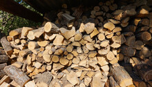 A Pile With Firewood Prepared ...