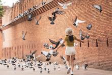 Female Tourists  Enjoy Walking...