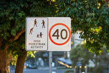 School Zone Sign On Leafy Street