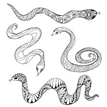 Coloring Page Collection With Decorative Ethnic Snakes, Isolated On White Background.