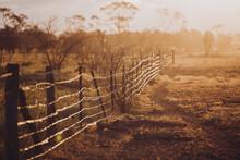 Farm Fence In Golden Light