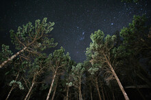 Looking Up At Starry Night Sky...