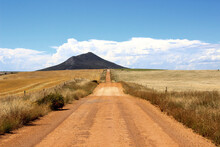 Outback Dirt Road In Summer