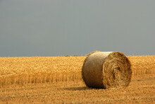 A Closeup Of A Rolled Hay Bale...