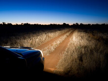Dirt Track Through Grassland L...