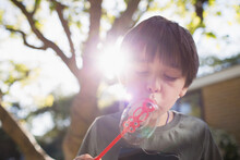 Boy Blowing Bubbles In Sunny B...
