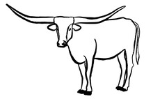 Texas Longhorn Bull, Cattle Icon, On White Background