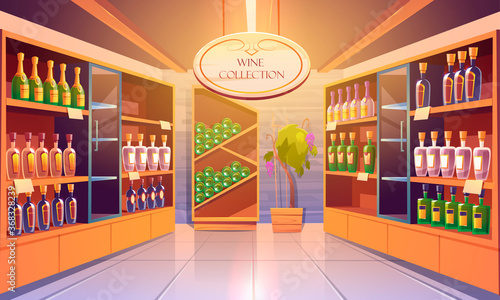 Obraz Wine shop, cellar interior with alcohol beverages collection, bottles on wooden shelves. Store in building basement with potted grapes vine, tiled floor and glow lamps. Cartoon vector illustration - fototapety do salonu