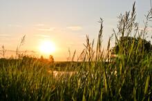 Summer Background - Sunset Ove...