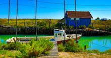 Multicolored Oyster Shed And B...
