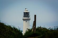 A Lighthouse Over A Grassy Field At Bempton Cliffs, Bridlington, East Yorkshire