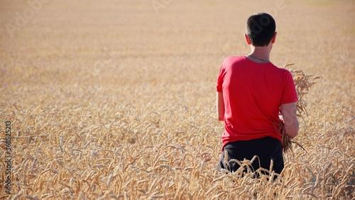 Valokuva Farmer in a field of wheat checks the ripened ears