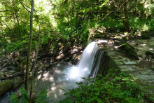 Waterfall Produced By The Orfe...