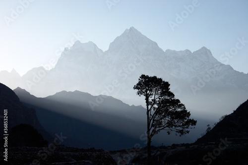 Plakaty do sypialni  lone-tree-silhouette-at-sunrise-himalayas-nepal