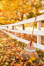 Rake, Fence And Colorful Yello...