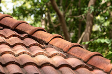 Old Red Tile Roof In The Shade Of Trees Against The Backdrop Of The Forest