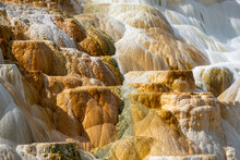 Closeup View Of Mammoth Hot Springs In Yellowstone National Park, Wyoming, USA