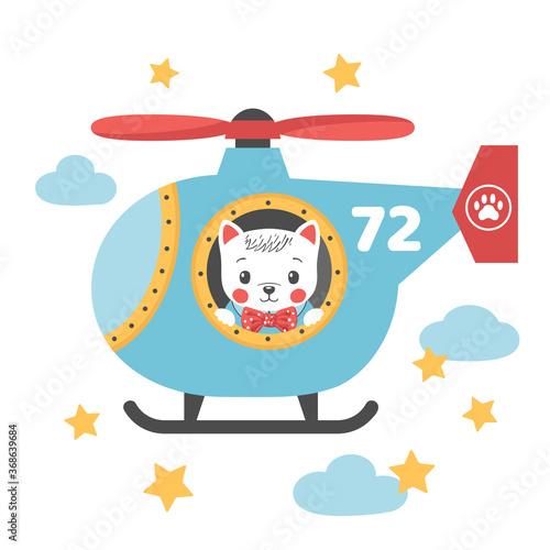 Fotografie, Obraz Cute little cat boy in a helicopter
