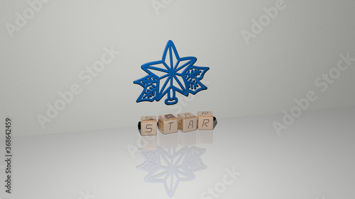3D representation of star with icon on the wall and text arranged by metallic cubic letters on a mirror floor for concept meaning and slideshow presentation Wallpaper Mural