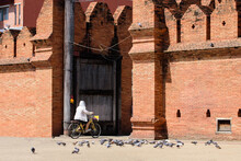 Women Tourists Cycling In The ...