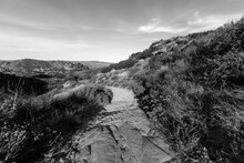 Black And White View Of Nature Path At Rocky Peak Park Near Los Angeles And Simi Valley In Ventura County California.