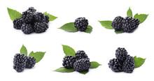 Set Of Ripe Blackberries On Wh...