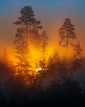 Beautiful Sun Rays Breaking Th...